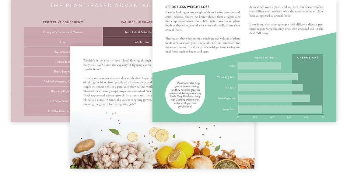 Plant-Based Knowledge Simplified Sample Pages
