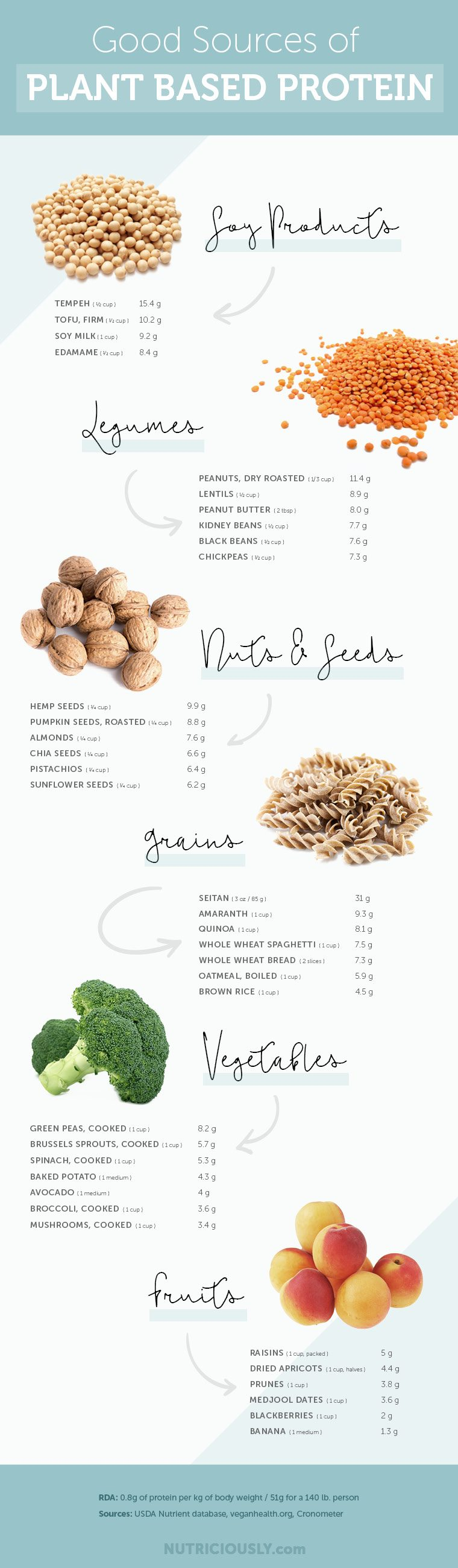 good sources of plant based protein infographic