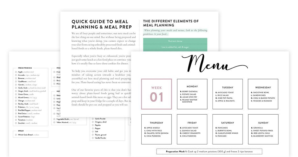 2-Week Vegan Meal Plan Sample Pages
