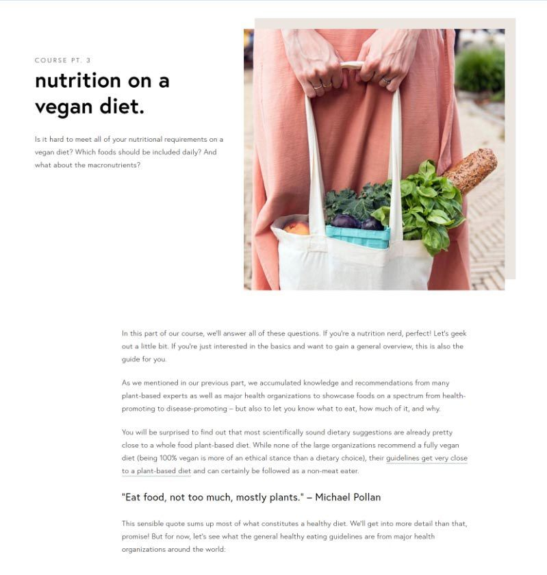 snippet of the free vegan transition course part 3