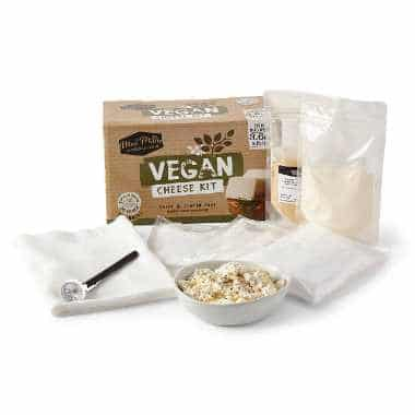 "carton box saying ""vegan cheese kit"" next to several bags of white powder, a bowl and a spoon"