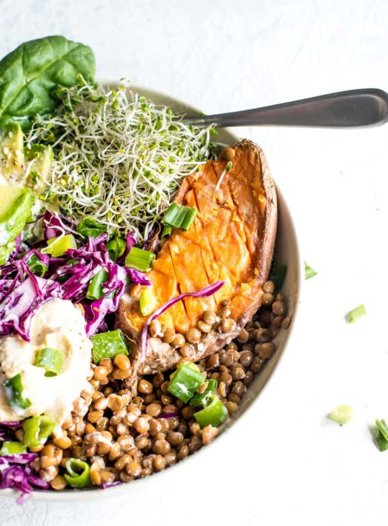 bowl with colorful healthy plant based foods like lentils, sweet potatoes, red cabbage and sprouts topped with hummus
