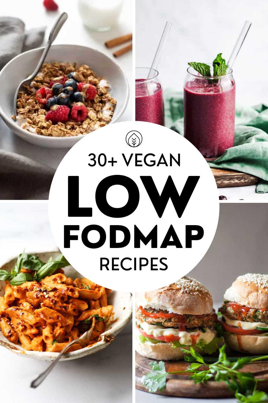 Vegan Low Fodmap Recipes Pin
