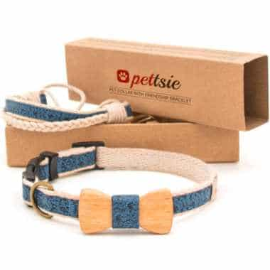 blue and beige dog collar with a little bow tie next to a box with a similar-looking bracelet