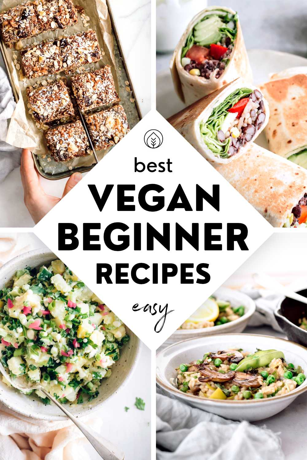 Vegan Beginner Recipes Pin