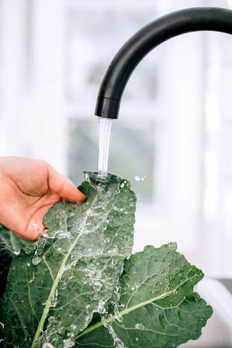 Holding kale leaves under flowing water to clean them in a bright kitchen environment